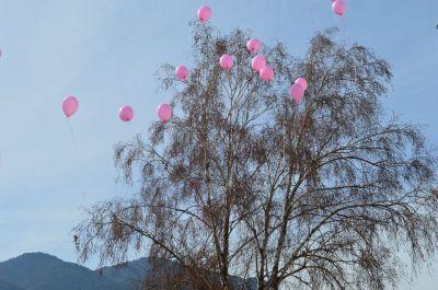 Ден на розовата фланелка в Първо - Изображение 1